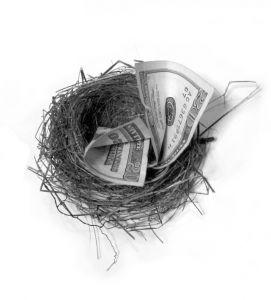 4882451716_3ca82eecc6 flikr nest egg